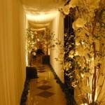 Cortinas e teto no corredor de entrada